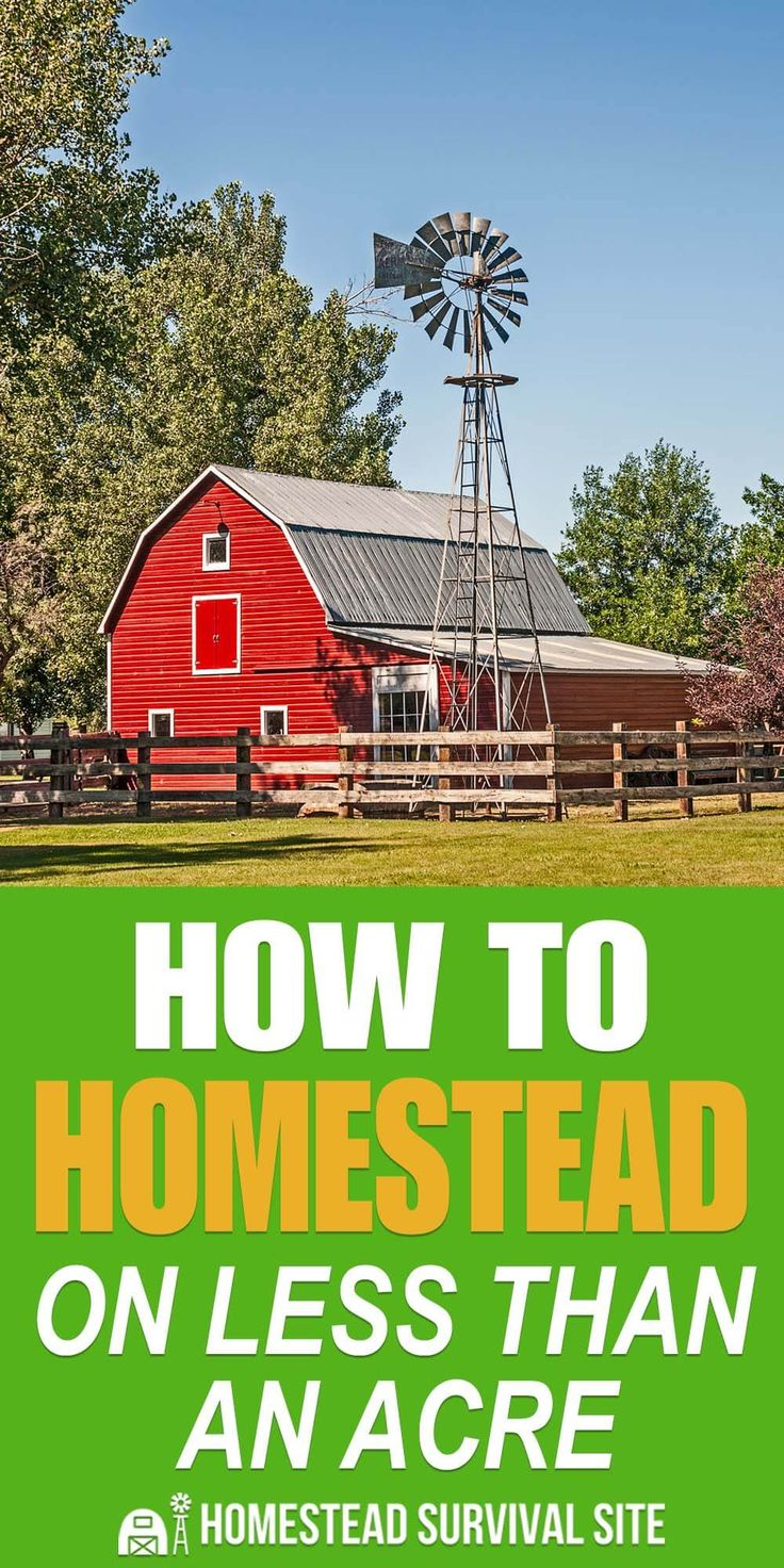 How To Homestead On Less Than An Acre