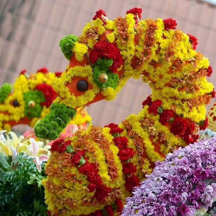 A seahorse made of flowers...fantabulous!  Follow my blogpost at  Flongology.wordpress.com Twitter: @FlongTheChariot Facebook: @pobrengbisaya24  ________________________________ . . . . . . . . . . . . . . . . . . . . . . #WhereToFindMe #BeautifulDestinations #Wanderlust #travelph #lostinph  #travelpics #visualsoflife #lifeofadventure #sinopinas #pinasmuna #TravelGram #LoveToTravel #TravelDiary #ChoosePhilippines #SoloTravellers #festival #instagrammers #justgoshoot #exploretocreate…