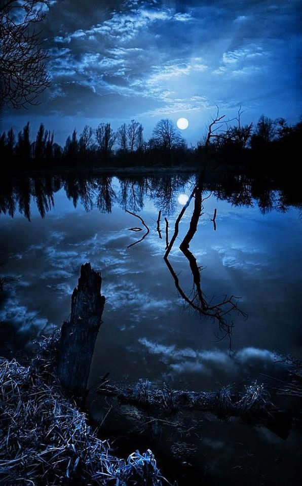 lake at night with moon. under the moonlight photography blue sky night water clouds trees cool moon lake at with n