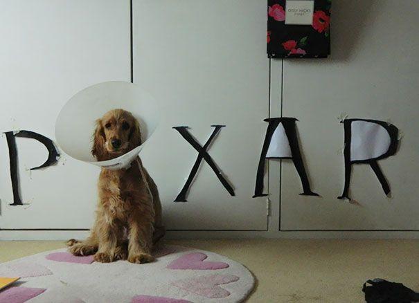 Pixar nunca estuvo tan triste.