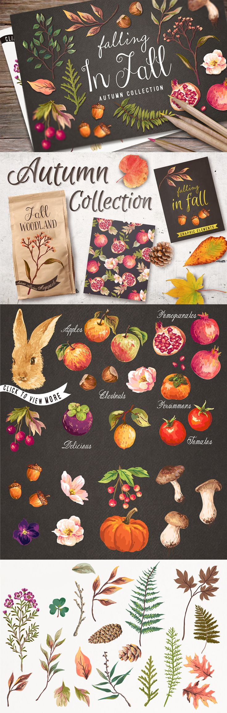 Elegant royal frame with crown vector colourbox - Designcuts Freebies And Deals For Designers