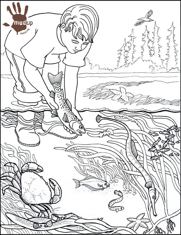 water pollution drawing Colouring Pages | kids coloring ...