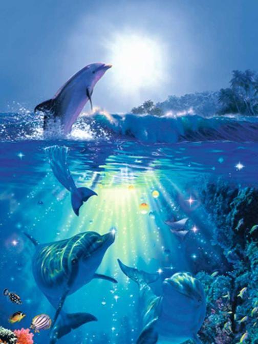 Whale Amp Underwater Door Mural Wallpaper Prepasted Bugs