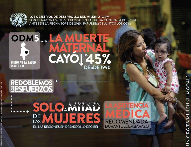 Infografía de los Objetivos de Desarrollo del Milenio (ODM) 5