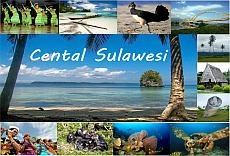 Central Sulawesi Tourism Travel Guide