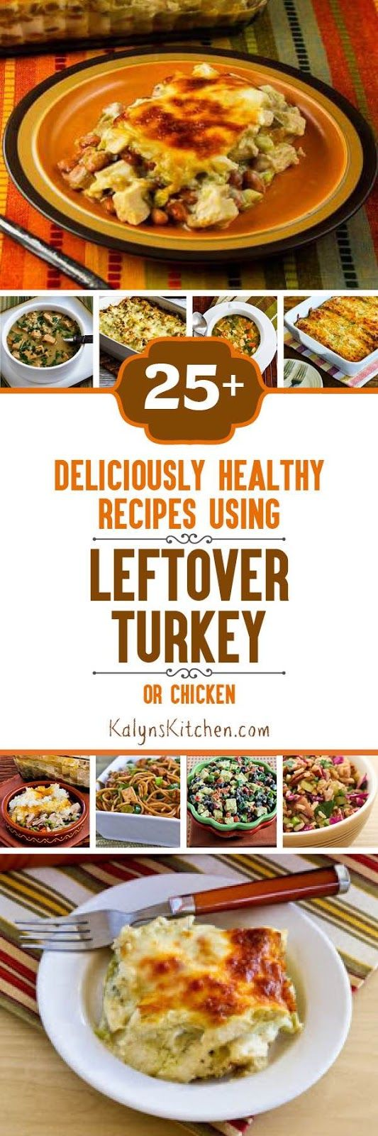 Here are Twenty-Five+ Deliciously Healthy Recipes Using Leftover Turkey (or chicken); PIN NOW so you'll have this whenever you're lucky enough to have leftover chicken or turkey and need a tasty idea. [KalynsKitchen.com]