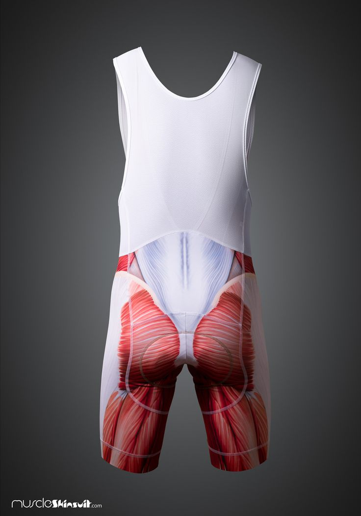 https://flic.kr/p/MGyq7C | muscle cycling bib - short back | more info about this product on: muscleskinsuit.com/Muscle_cycling_kit