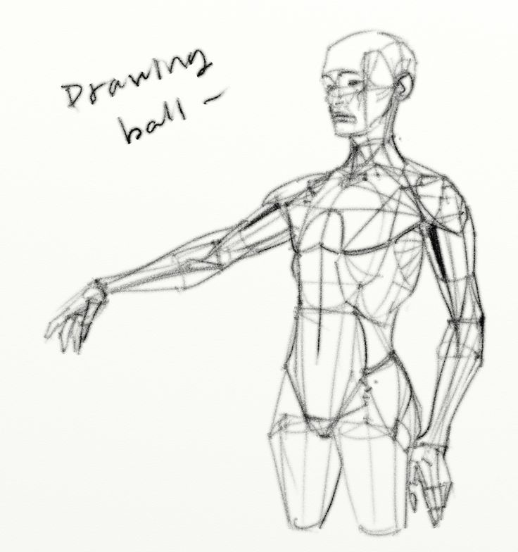 493 Best Images About Figure Drawing / Torso On Pinterest