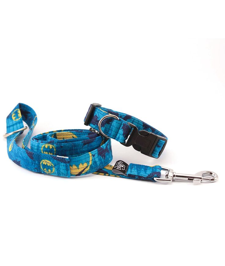 Simple collar with Simple leash