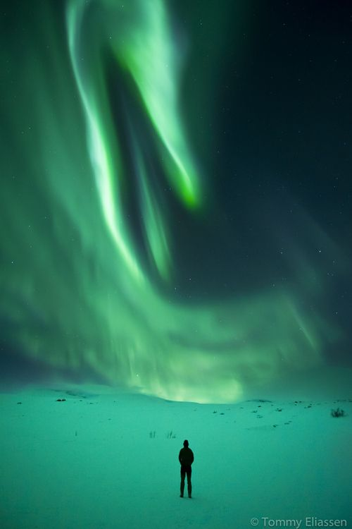 The beauty of nature inspires belief in the Natural Intelligence of the Universe (aurora)