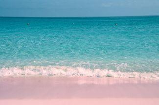 Best Caribbean Beaches for Weddings   Caribbean Destination Weddings   Top Wedding Venues   Bahamas