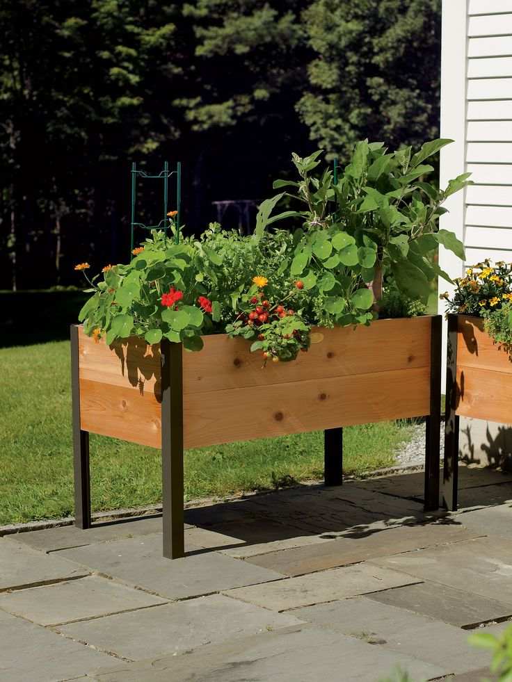 Planter Boxes: Standing Height Cedar Raised Garden
