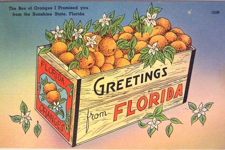 Florida Medical Marijuana Operator to Trade On CSE