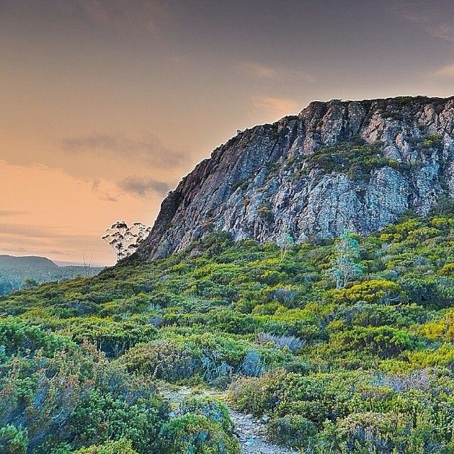 The magnificent Herod's Gate within the Walls of Jerusalem National Park. #nationalpark #wallsofjerusalem #tasmania #discovertasmania Image Credit: Cheri Foster-Greenwood