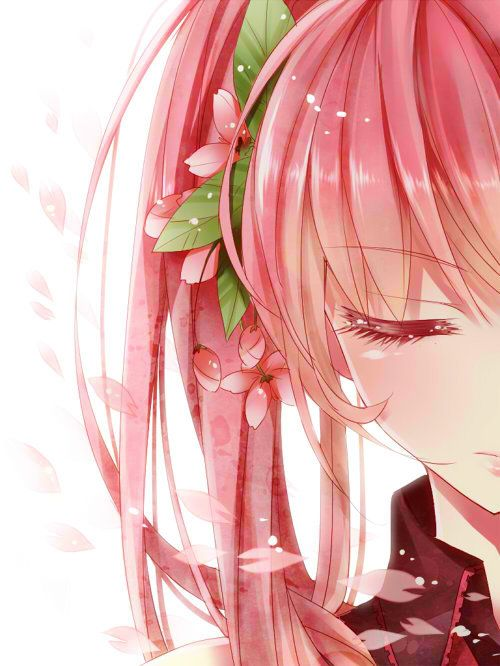 """tsundere:  1girl alternate hair color cherry blossoms close-up closed eyes face flower hair flower hair ornament hatsune miku long hair pink hair sakura miku solo twintails vocaloid x1213hide  """