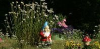 How to Make a Gnome Village in Your Garden | eHow