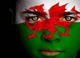 Patriotic face paint #wales #cymru