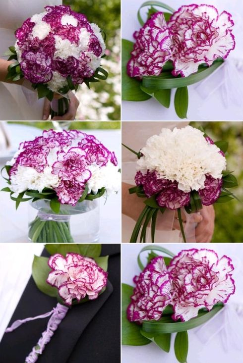 carnations for bridal bouquets | New Trendy Ideas of Wedding Flowers » carnation-wedding-flowers