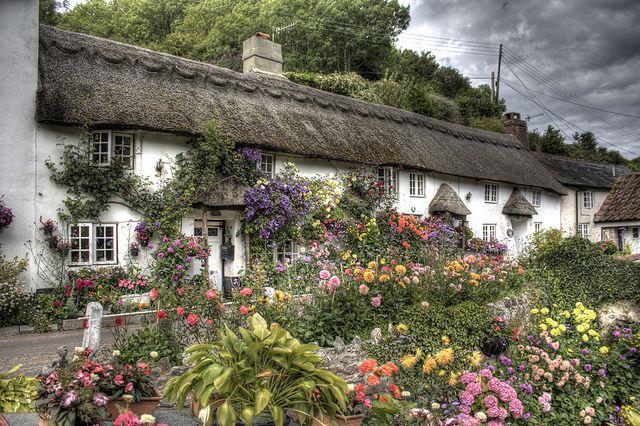 Devon Cottages | Flickr - Photo Sharing!