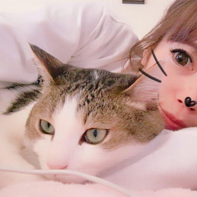 ♡ おかーさん 🎉お誕生日おめでとう🎈 ぼくのチュール いっこあげようか?? #ねこ部 #愛猫#にゃんちゃん  #もこもこやないか  #おかーさん喘息です #猫アレルギー#でも猫好き #ツンデレ#ひっつきむし