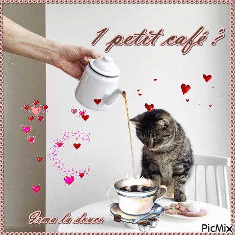 Qui veux 1 café
