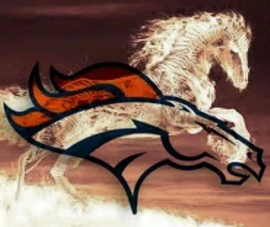 Check out this great picture Broncos fans!!!