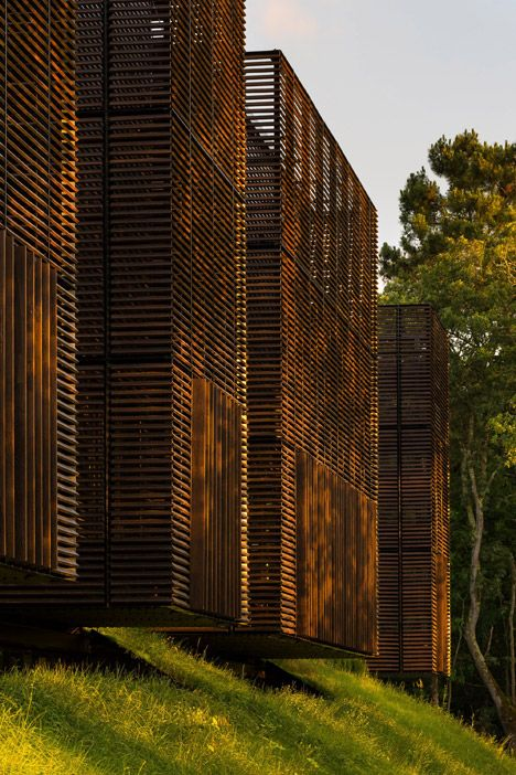Mont-de-Marsan education centre comprises wooden boxes hovering over a forest floor