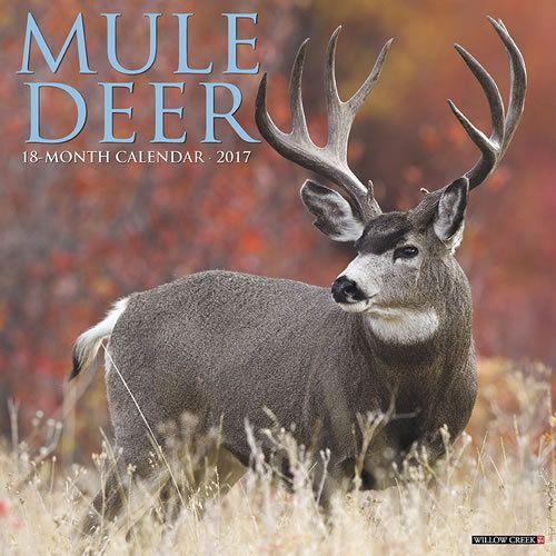 Mule Deer 2017 Calendar