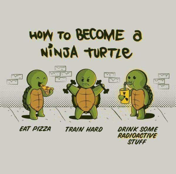 Ninga Turtle
