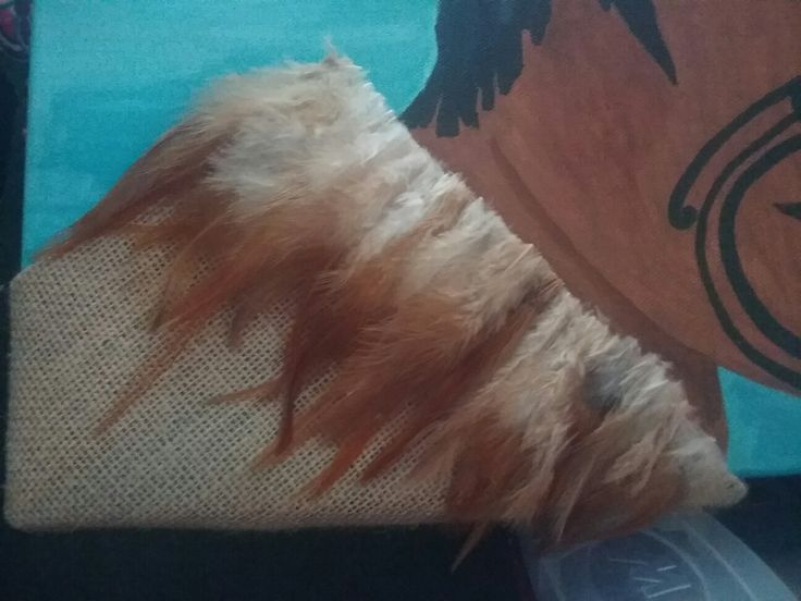 Feathers glued in to place 😊