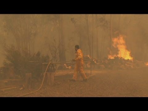 VIDEO Homes destroyed as NSW ravaged by fire. Watch a compilation of footage from ABC crews on the ground and in the air as dry winds fan the flames of NSW's bushfire emergency.