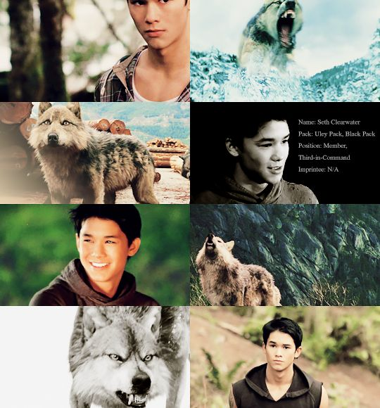 43 best images about Seth Clearwater on Pinterest ... Twilight Wolf Pack Seth