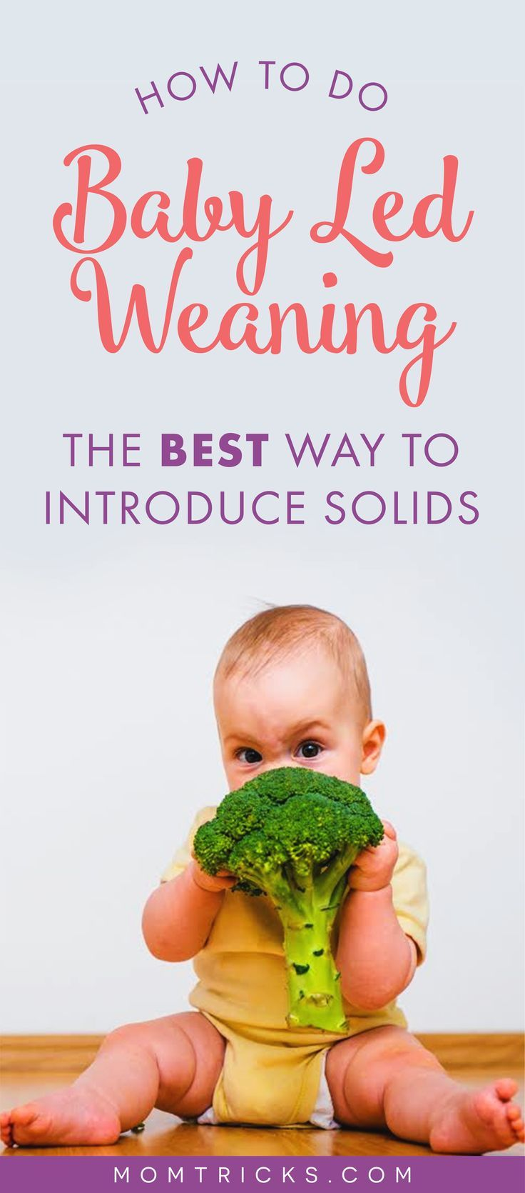 Baby-led weaning is the practice of offering only whole foods to the baby, not purees or