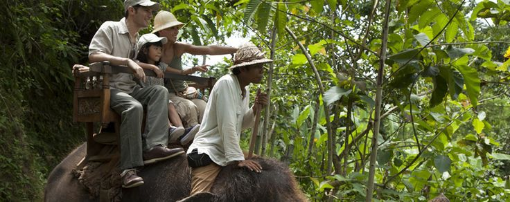 Club Med Bali has so many activities and excursions to choose from, but it is hard to go past the 1/2 day elephant ride through the Balinese villages, rice fields and jungle.