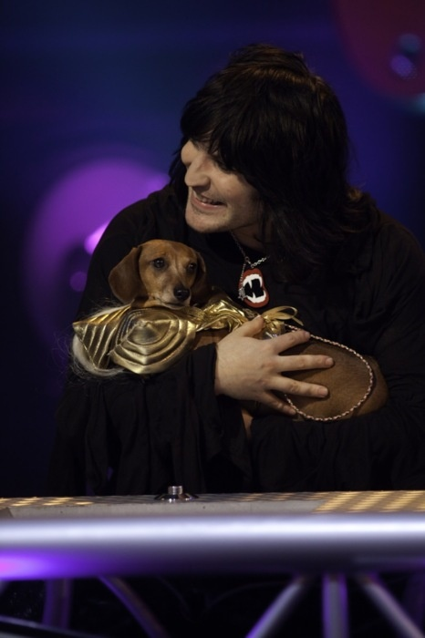 I can't even... Noel with animals? <3