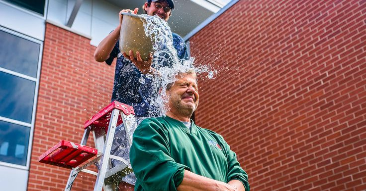 Wait! Did the Ice Bucket Challenge just fund a breakthrough ALS gene discovery?