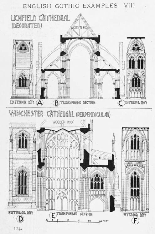 Elevations and section in the evolution of English Gothic Cathedrals A History of Architecture on the Comparative Method by Sir Banister Fletcher