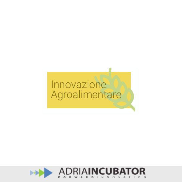 """Il sistema innovativo agricolo è il composto di un insieme di fattori coinvolti nella conoscenza e nella diffusione dell'innovazione che vanno a comporre l'""""ecosistema"""" favorevole all'innovazione.  http://www.adriaincubator.eu/index.php/it/l-innovazione/l-innovazione-agroalimentare.html"""