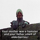 Monty Python and the Holy Grail. Craziest movie I have ever seen...