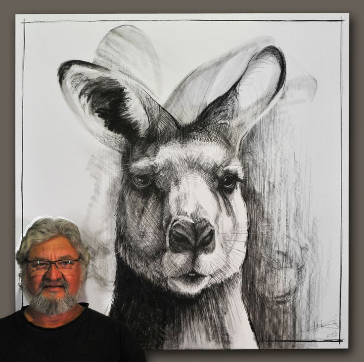 Drawings of Foley a two year old red male kangaroo by Michael Chorney - Art People Gallery