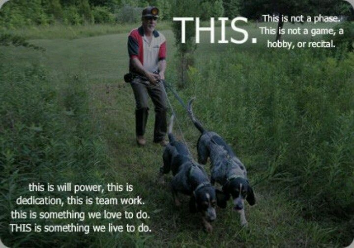 coon hunting pics | thecoondawgway | Coon Hunting