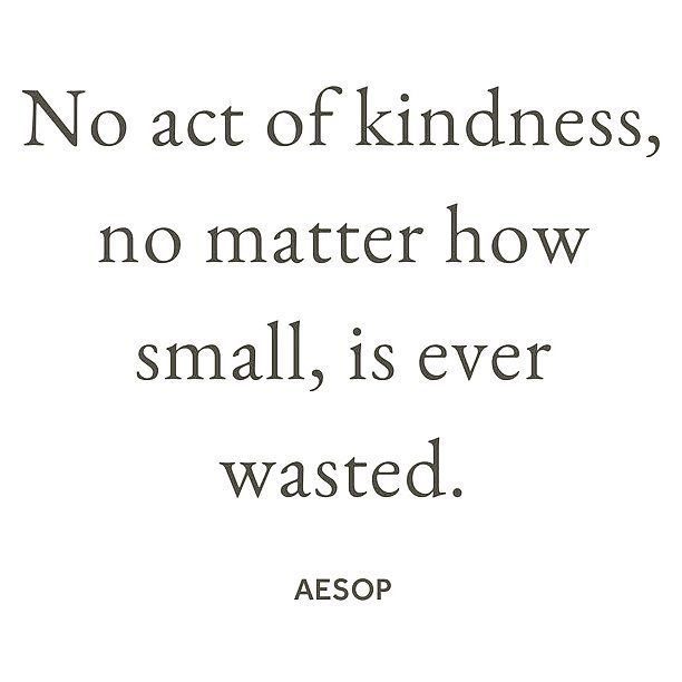 . . . . .  Repost @nutritiouslifeofficial) Today is #worldkindnessday! All in favor of celebrating everyday  #livinganutritiouslife #liveconsciously
