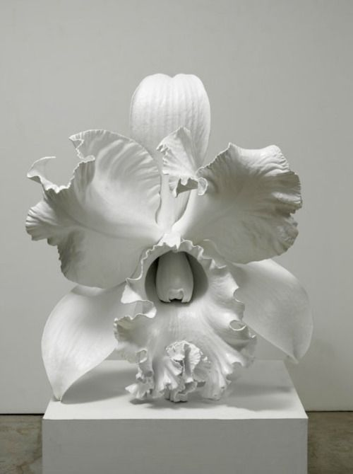 Marc Quinn  The Archaeology of the Baroque  2012 http://7while23.tumblr.com/post/20601121438