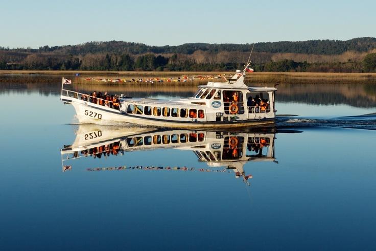 Ferry por el rio valdivia chile!!