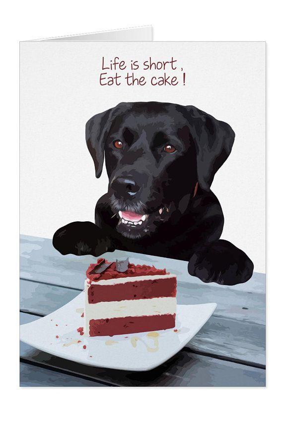 Black Lab Card Dog Card Ls02ec All Occasion Cards Dog Card