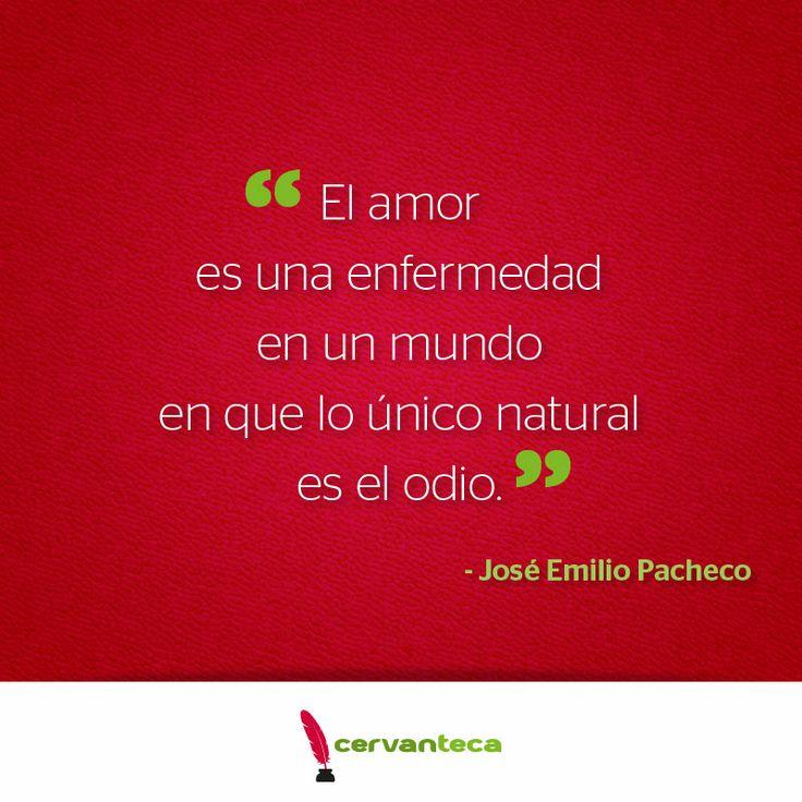 José Emilio Pacheco #Frase #Cita #Amor | Frases ...