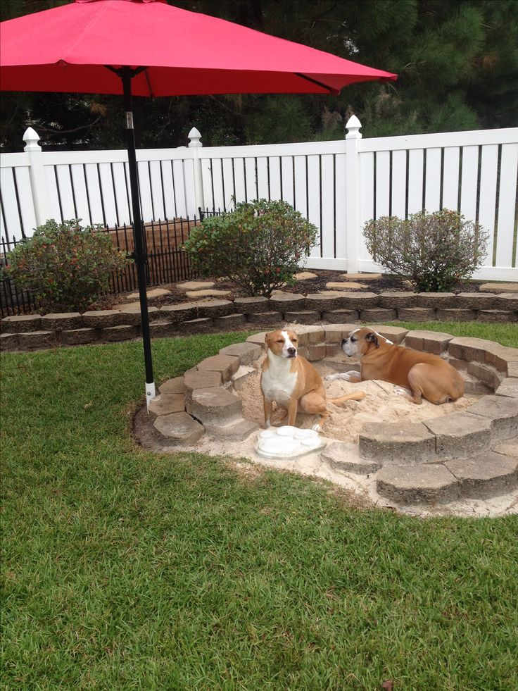 """DIY doggy sandbox! For those who """"dig it""""! Just dig a hole and line it with landscape pavers and cinderblocks, so dirt and bugs stay out. Fill with sand! Great for teaching your """"diggers"""" where it's OK to dig."""