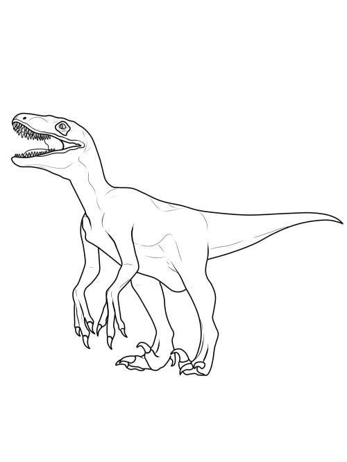 Velociraptor Malvorlagen Für Kinder Ausmalbilder Jurassic World