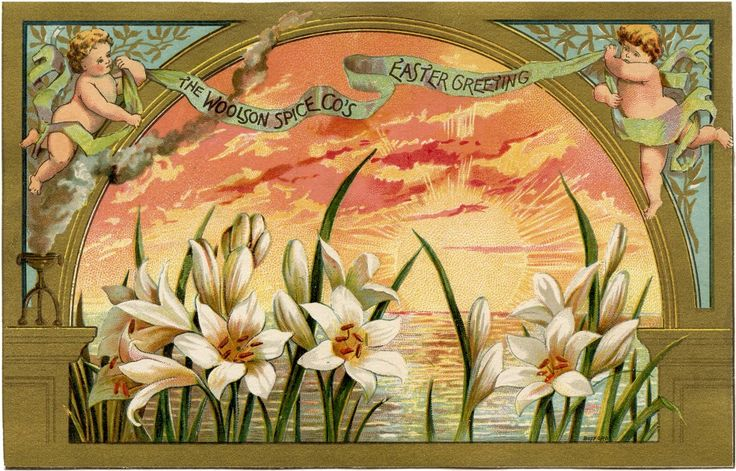 Beautiful Spice Company Easter Card! - The Graphics Fairy..This is a Beautiful Spice Company Easter Card! Shown above is a gorgeous Vintage Advertising card with two cute Cherubs, a lovely Sunrise, and a bunch of pretty White Lilies!  Nice for your Easter themed Collage or Mixed Media Projects! -