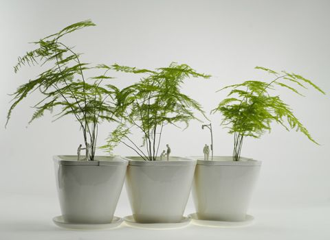 INDOOR GARDEN: PARK PLANTERS Science and sons park planters city park bonsai garden houseplant tree house plant